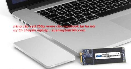 nâng cấp ssd 256g nvme cho macbook uy tín